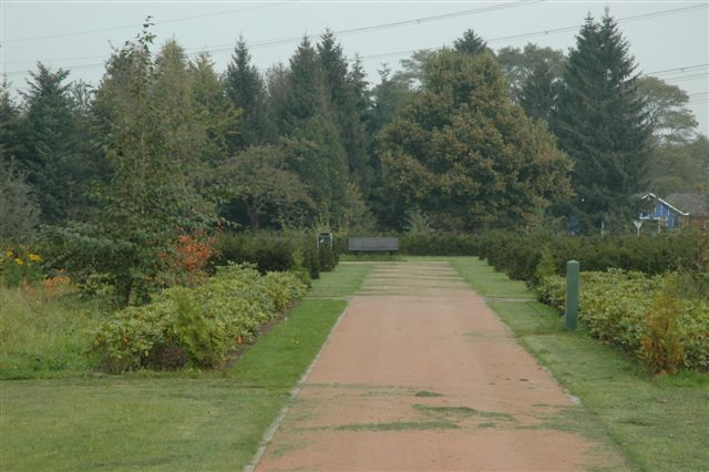 zandweg met gras en border aan de zijkanten
