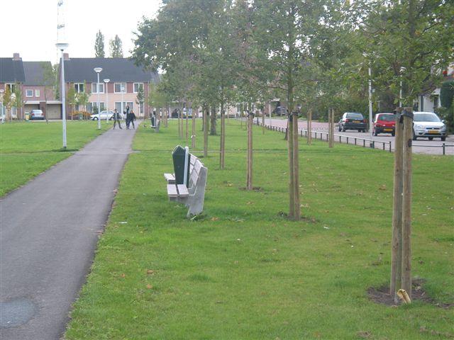 gedeelte van een voetpad, groenstrook met bankje naast een weg