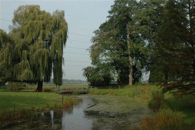 foto van een weide met sloot tussen bomen