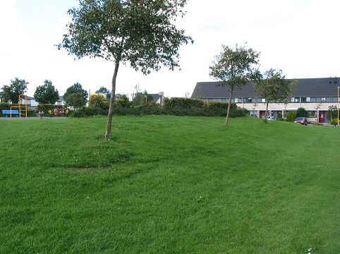 Weide na realisatie van het park Butterhuizen